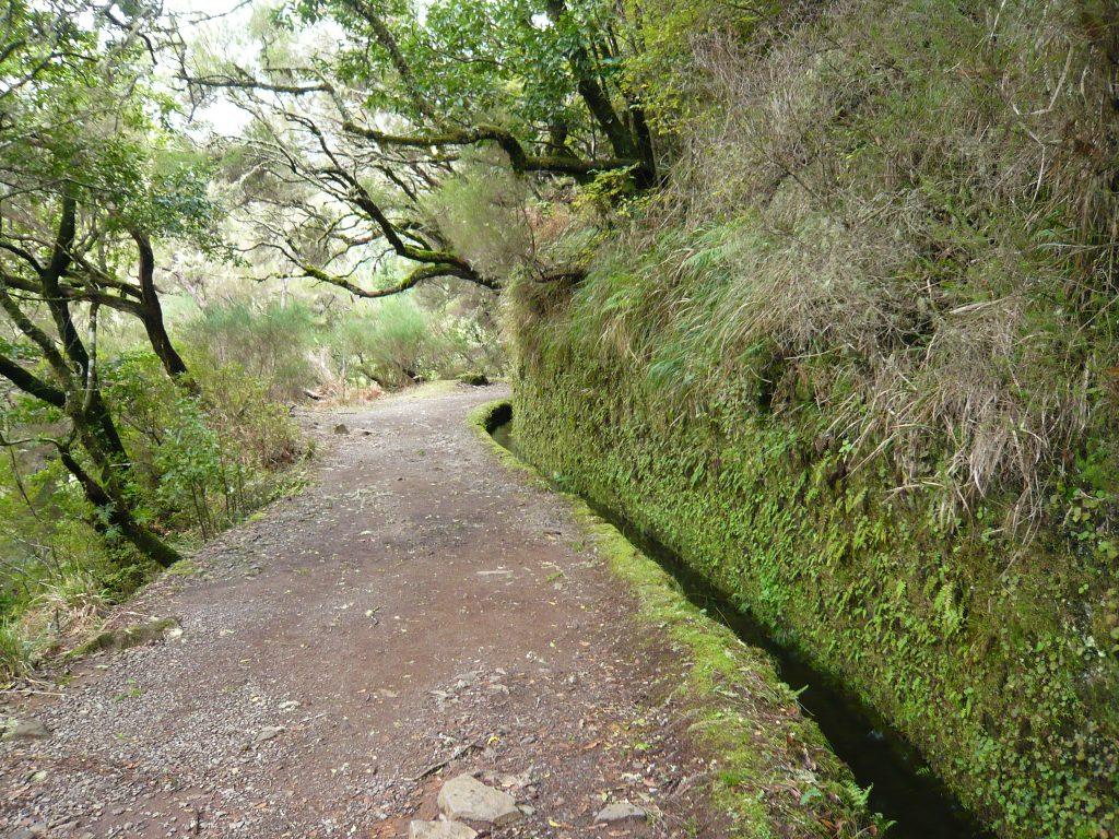Levadas - Wasserläufe sind typisch für Madeira