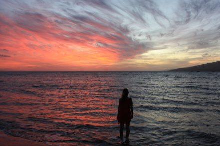 Maui & Me