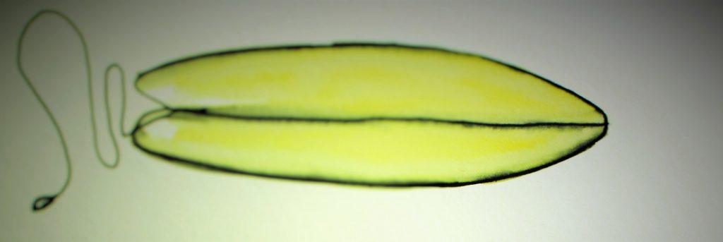 Surfbrett_yellow1