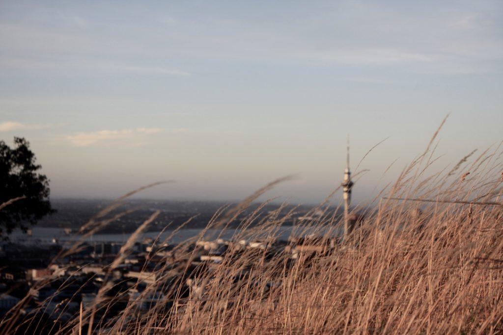 Auckland vom Mount Eden aus gesehen